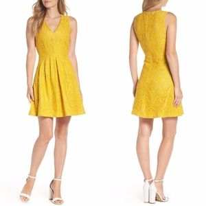 NEW Vince Camuto Mustard Lace Fit & Flare Dress 6